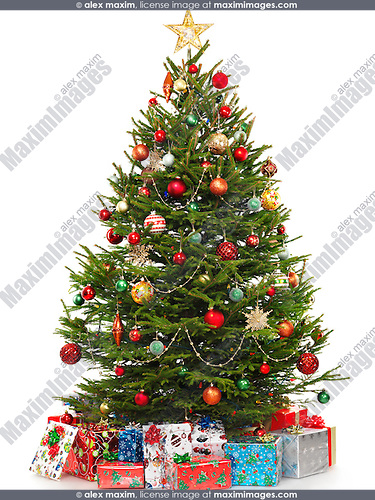 Beautiful Decorated Christmas Tree With Colorful Wrapped Gifts Under It Isolated On White Background