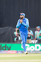 Ravindra Jadeja (India) on as a substitute takes the catch which concludes the fixture during India vs Australia, ICC World Cup Cricket at The Oval on 9th June 2019