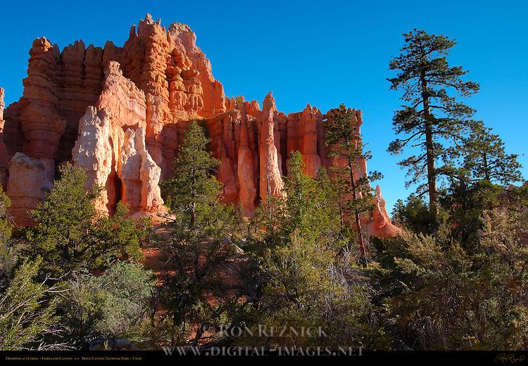 Hoodoos at Sunrise, Fairyland Canyon, Bryce Canyon National Park, Utah