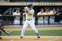Brendan Tinsman (9) of the Wake Forest Demon Deacons at bat against the Notre Dame Fighting Irish at David F. Couch Ballpark on March 10, 2019 in  Winston-Salem, North Carolina. The Demon Deacons defeated the Fighting Irish 7-4 in game one of a double-header.  (Brian Westerholt/Four Seam Images)