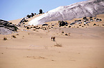 Benedict Allen  during his journey along the coast of Namibia on camels.  Diamond coast , Namibia.