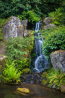 Seattle Washington:<br /> Kubota Garden, spring waterfall
