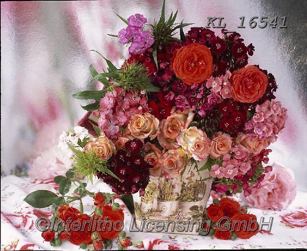 Interlitho-Alberto, FLOWERS, BLUMEN, FLORES, photos+++++,pink flowers,KL16541,#f#, EVERYDAY