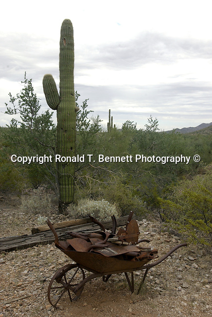 Wheel barrel near gold mine with saguaro cactus in desert, mining equipment,Gold mining ghost town, ghost town, Gold mining, gold, goldmine, remove gold, wheels from gold mine, Mining equipment, gold panning, open pit, gold extraction, gold rush, gold prospecting, ore, ore genesis, placer mining,Arizona, State of Arizona, Southwest, desert, 48th State, Last of contiguous states, Phoenix, Scottsdale, Grand Canyon, Indian reservations, four corners, desert landscape, exrophyte, western United States, Southwest, Mountains, plateaus, ponderosa pines, Colorado River,  Mountain lion, Navajo Nation, No daylight savings time, Arizona Territory, Arizona, AR, Ariz, Airzona, Arizonia, Arizone, AZ, Fine Art Photography by Ron Bennett, Fine Art, Fine Art photography, Art Photography, Copyright RonBennettPhotography.com ©