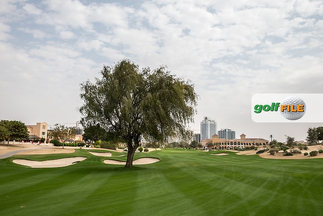 9th fairway at The Els Club , Dubai, United Arab Emirates.  28/01/2016. Picture: Golffile | David Lloyd<br /> <br /> All photos usage must carry mandatory copyright credit (&copy; Golffile | David Lloyd)