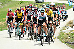 The peleton including race leader Geraint Thomas (WAL) Team Sky Yellow Jersey in action during Stage 6 of the 2018 Criterium du Dauphine 2018 running 110km from Frontenex to La Rosiere, France. 9th June 2018.<br /> Picture: ASO/Alex Broadway | Cyclefile<br /> <br /> <br /> All photos usage must carry mandatory copyright credit (&copy; Cyclefile | ASO/Alex Broadway)