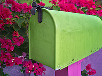 Mailbox and bougainvillea flowers with purple wall. St. John, Virgin Islands
