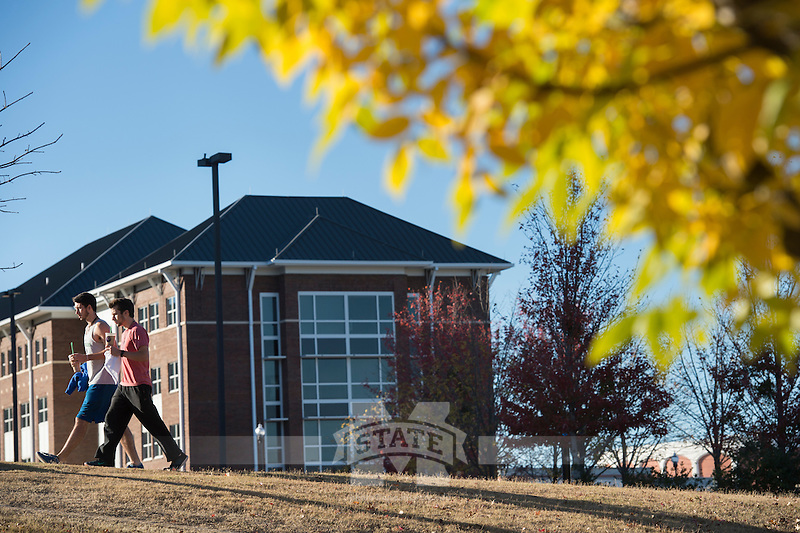 Fall leaves with Dogwood Hall in background.<br />  (photo by Megan Bean / &copy; Mississippi State University)