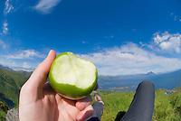 closeup of half eaten apple