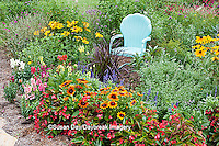 63821-205.20  Blue chair in flower garden with Red Dragon Wing begonia (Begonia x hybrida), Autumn Colors Black-eyed Susans (Rudbeckia hirta 'Autumn colors'), Snapdragons (Antirrhinum),  Blue Victoria Salvia (Salvia farinacea), Indian Summer Rudbeckia (Rudbeckia hirta 'Indian Summer'), Walker's Low Catmint (Nepeta x faassenii) Purple Fountain Grass (Pennisetum setaceum 'Rubrum') Marion Co. IL