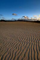 Sand dunes late afternoon, Corralejo, Fuerteventura, Canary Islands, Spain.