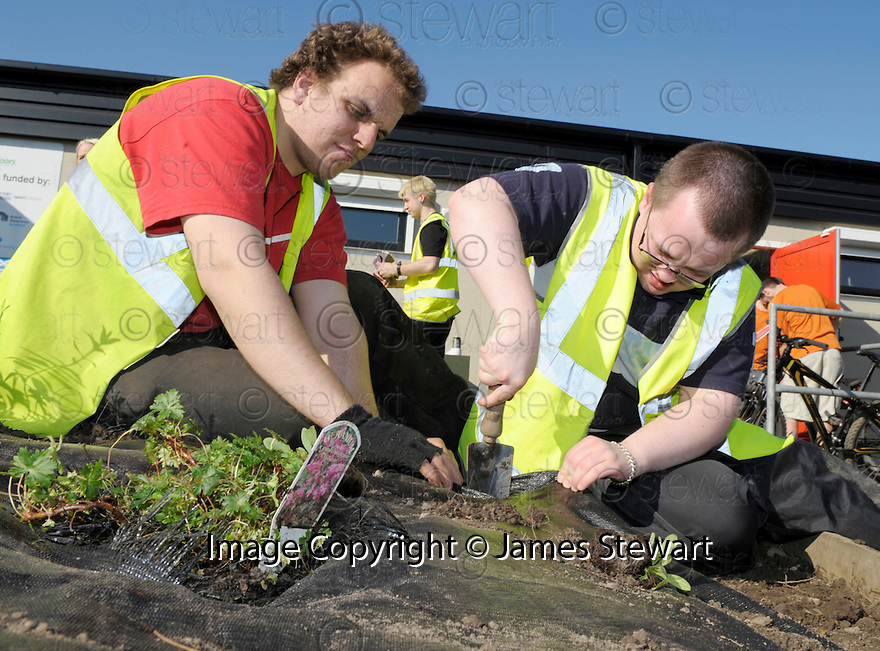 :: GREEN ACTION PROJECT VOLUNTEERS GET PLANTING  AT THE WATERWAYS TRUST ACTION OUTDOORS CENTRE IN BRIGHTONS ::