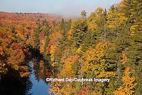64776-01514 Trees in fall color Marquette County Upper Peninsula Michigan