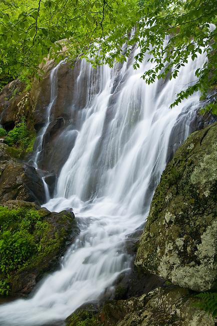 Dark Hollow Falls on Hogcamp Branch, Shenandoah National Park, Virginia