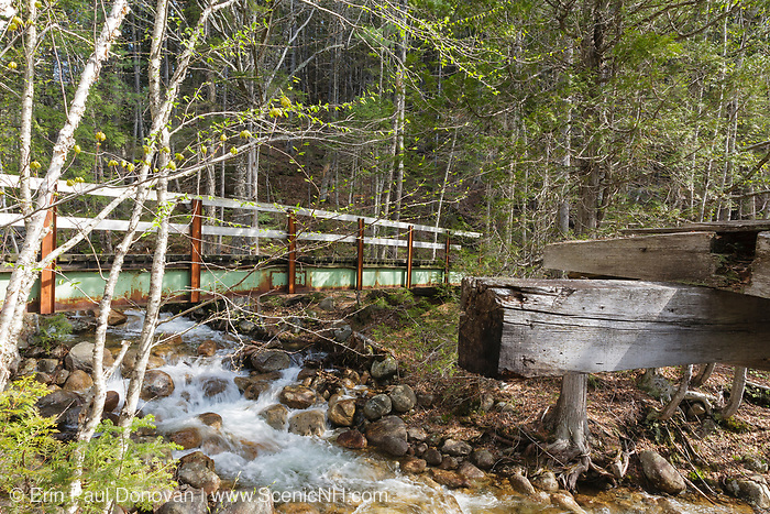 Pemigewasset Wilderness - Footbridge next to the J.E. Henry Railroad Trestle (Black Brook Trestle or Trestle 16 is proper name) on the side of the Wilderness Trail.  Located in Lincoln, New Hampshire USA
