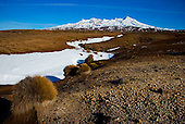 Mt Ruapehu & Rangipo desert, Central Plateau, Tongariro National Park, North Island, New Zealand