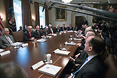 United States President Donald J. Trump makes opening remarks as he holds a Cabinet meeting in the Cabinet Room of the White House in Washington, DC on Wednesday, January 10, 2018.  <br /> Credit: Ron Sachs / Pool via CNP