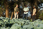 Conservationists, Jake Overton and Evans Nsende, speaking with village headman about conservation programs in game managment area, Namwala, Zambia