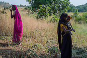 Rekha RAMESH (right) is seen with her son, Prahlad RAMESH and her mother, Baijabai Badri in their fields in Dhawati VIllage of Khaknar block of Burhanpur district in Madhya Pradesh, India.  Photo: Sanjit Das/Panos for ACF