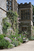 A wooden bench sits in front of a summer border at Haddon Hall