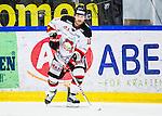 S&ouml;dert&auml;lje 2014-01-06 Ishockey Hockeyallsvenskan S&ouml;dert&auml;lje SK - Malm&ouml; Redhawks :  <br />  Malm&ouml; Redhawks Joey Tenute <br /> (Foto: Kenta J&ouml;nsson) Nyckelord:  portr&auml;tt portrait