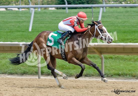 Carolina Princess winning at Delaware Park racetrack on 6/16/14