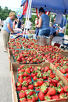 MEGAN DAVIS MCDONALD COUNTY PRESS/Loads of fresh, local strawberries greeted visitors to the 2018 Berries, Bluegrass & BBQ Festival in Anderson. More fresh berries will be available this year as the festival celebrates the area's rich strawberry farming history.