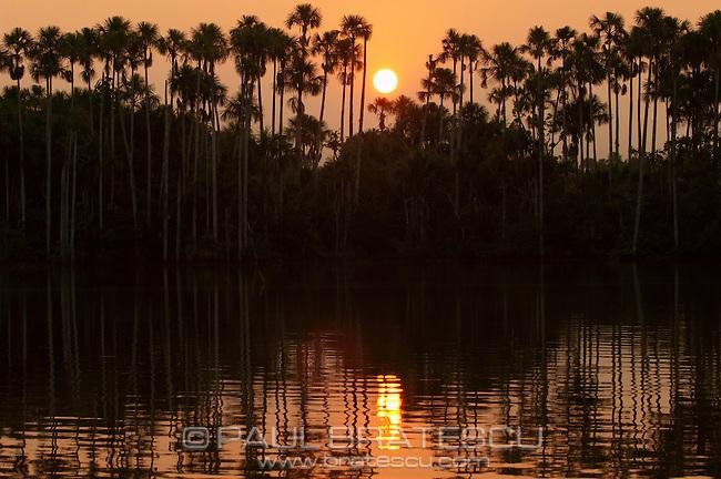 Oxbow Lake, Peru