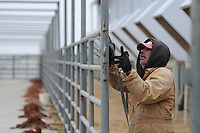 NWA Media/ J.T. Wampler -Don Langston of Springdale works at rebuilding a livestock fence behind the Pauline Whitaker Arena in Fayetteville Tuesday Dec. 2, 2014. Langston works for Modern Fence Co. and worked last March at tearing down the fence so work could be done on the building. The fence connecting the arena to the stables should be done by the end of the week.