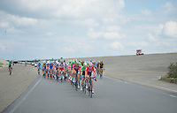 peloton lead by Frederik Willems (BEL/Lotto-Belisol) between the dikes and the dunes<br /> <br /> 3rd World Ports Classic 2014<br /> stage 1: Rotterdam - Antwerpen 195km