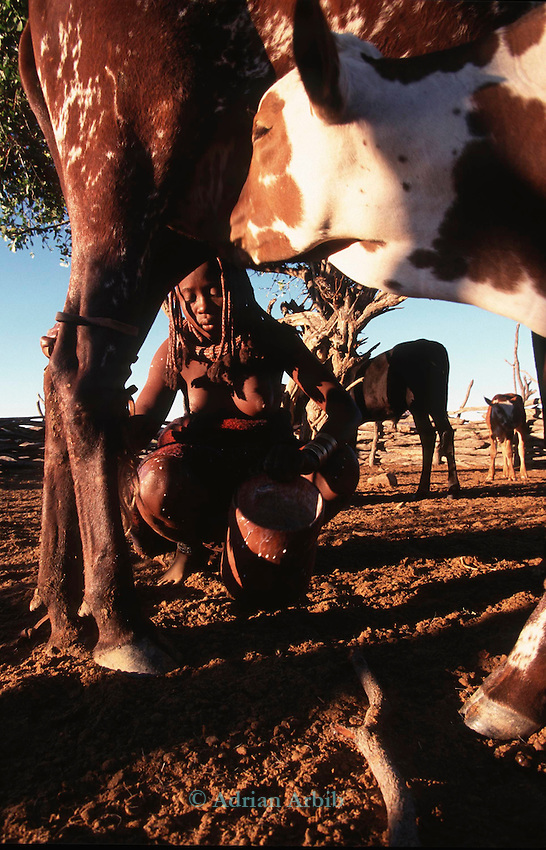 A Himba girl  in a cattle Kraal Northern Namibia.
