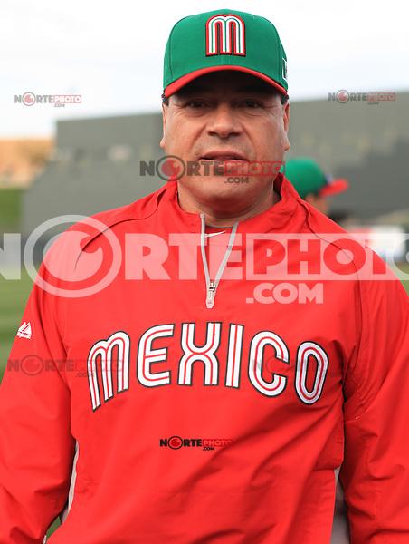Teodoro Higuera **2013 World Baseball Classic in Arizona