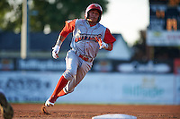 Williamsport Crosscutters shortstop Grenny Cumana (2) running the bases during a game against the Batavia Muckdogs on July 15, 2015 at Dwyer Stadium in Batavia, New York.  Williamsport defeated Batavia 6-5.  (Mike Janes/Four Seam Images)