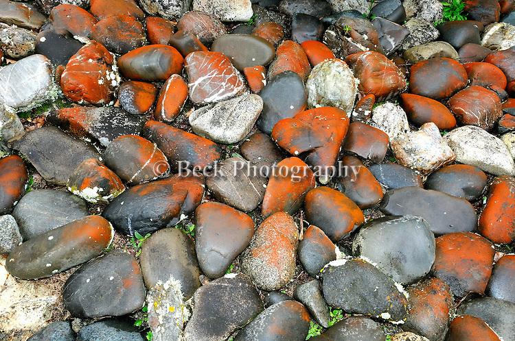 South Island New Zealand rocks