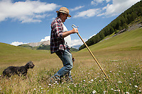 Bernard Bruno, sheep raiser, sets off on foot with his sheepdogs to the higher pastures where his sheep are grazing, Plateau de Longon, Mercantour National Park, French Alps, France, 01 August 2013.