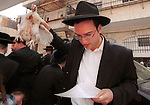 """An Orthodox Jewish man waves a rooster over his head in the Orthodox neighbourhood of Mea Shearim in Jerusalem, Israel. Religious Jews perform """"kaparot"""" rituals on the days before Yom Kippur, the Day of Atonement and the holiest day in the Jewish year, transferring one's sins from the past year to the chicken which is ritually slaughtered then given to the poor. Photo by QUique Kierszenbaum"""