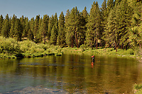 Fly fishing, Lower Williamson River, Oregon.  June.  <br /> <br /> Note: No Model Release.