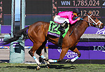November 2, 2019: Belvoir Bay, ridden by Javier Castellano, wins the Breeders' Cup Turf Sprint on Breeders' Cup World Championship Saturday at Santa Anita Park on November 2, 2019: in Arcadia, California. Bill Denver/Eclipse Sportswire/CSM