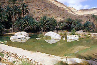 Wadi Bani Khalid, Oman, Arabian Peninsula, Middle East - Man-made barriers create resevoirs to allow controlled flow of mountain spring water for irrigation.