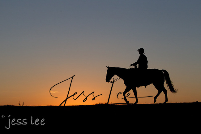 cowboy at sunrise Cowboys working and playing. Cowboy Cowboy Photo Cowboy, Cowboy and Cowgirl photographs of western ranches working with horses and cattle by western cowboy photographer Jess Lee. Photographing ranches big and small in Wyoming,Montana,Idaho,Oregon,Colorado,Nevada,Arizona,Utah,New Mexico.