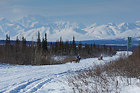 Jordan Seager, Andrew Noland and Katie Deits teams run down the trail on the Denali Highway with the Alaska Range in the background during the start day of the 2015 Junior Iditarod on Sunday March 1, 2015<br /> <br /> <br /> <br /> (C) Jeff Schultz/SchultzPhoto.com - ALL RIGHTS RESERVED<br />  DUPLICATION  PROHIBITED  WITHOUT  PERMISSION