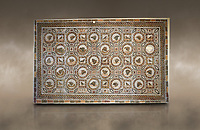 Picture of a Roman mosaics design depicting shells and birds, from the ancient Roman city of Thysdrus. 3rd century AD, House of Selinus. El Djem Archaeological Museum, El Djem, Tunisia. Against an artbackground