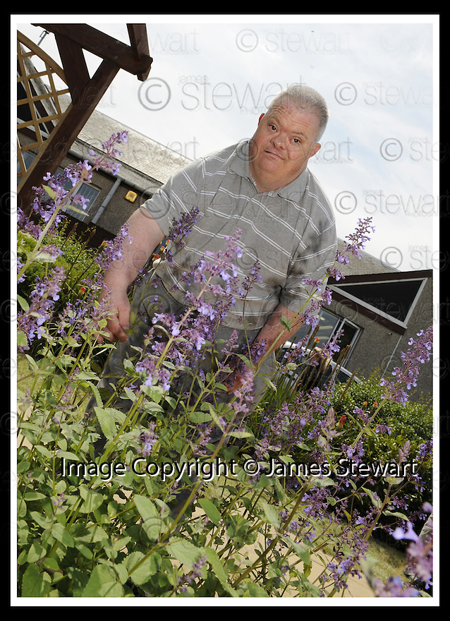 25/06/2009  Copyright  Pic : James Stewart.11_oswald_street  .:: OSWALD STREET GARDEN PROJECT ::  .James Stewart Photography 19 Carronlea Drive, Falkirk. FK2 8DN      Vat Reg No. 607 6932 25.Telephone      : +44 (0)1324 570291 .Mobile              : +44 (0)7721 416997.E-mail  :  jim@jspa.co.uk.If you require further information then contact Jim Stewart on any of the numbers above.........