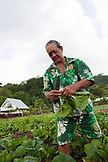 "FRENCH POLYNESIA, Raiatea Island. ""Mamie Fruits"" at her farm on the island. She sells her produce to local businesses  and at her roadside store."