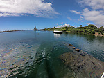USS Arizona With The USS Missouri In The Background, Pearl Harbor