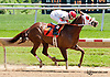 Social Statement winning at Delaware Park racetrack on 6/4/14