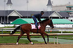 April 28, 2019 : Champagne Anyone works out at Churchill Downs, Louisville, Kentucky, preparing for a start in the Kentucky Oaks. Owner Six Column Stables LLC and Randall L. Bloch, trainer Ian R. Wilkes. By Street Sense x Lucevan (Ghostzapper) Mary M. Meek/ESW/CSM
