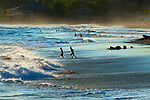 Playing in the surf on El Tunco beach on the Pacific in El Salvador.