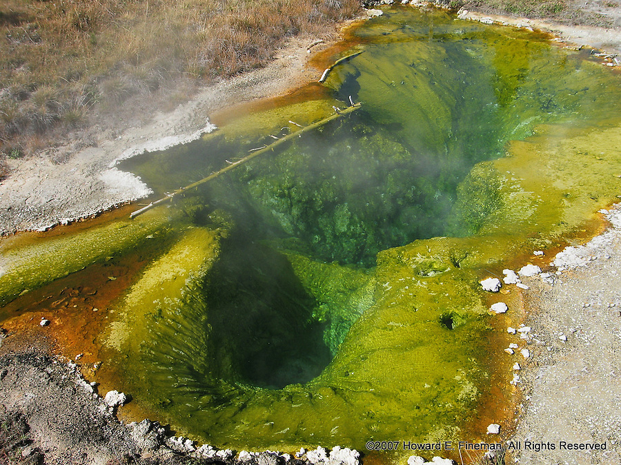 Hot Springs 1, Yellowstone