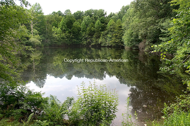 OXFORD CT. 08 July 2010-070810SV06--Oxford recently completed the $1.2 million purchase of 66 acres at 53 Quaker Farms Road, which is inside the Rockhouse Hill Sanctuary. The town bought the land from Haynes Construction of Seymour. This is view of a pond on the property.<br /> Steven Valenti Republican-American